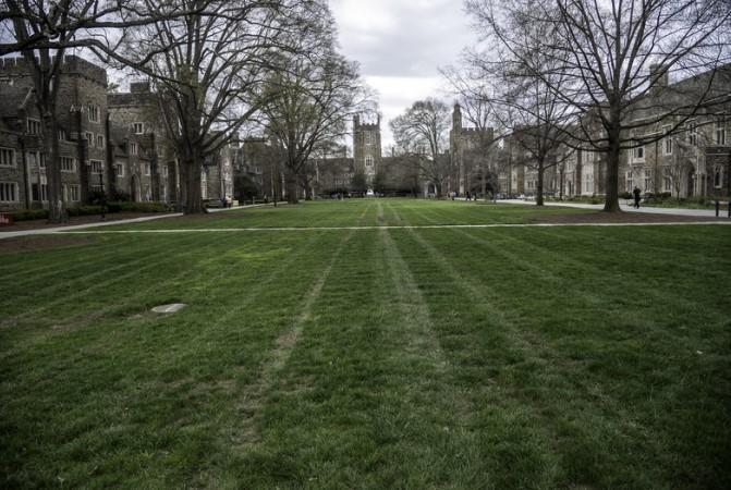 Gnojivo za travu neophodno je za travnjak